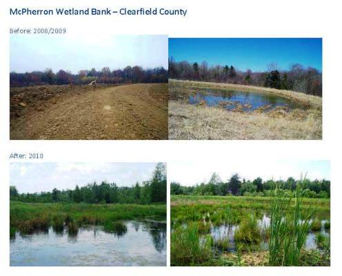 Clearfield County Wetlands Area