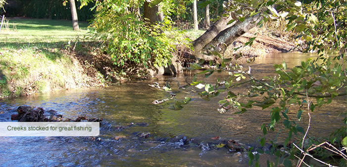 Creeks stocked for great fishing